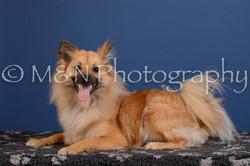 M&N Photography -DSC_5023