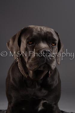 M&N Photography -DSC_2171