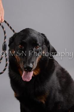 M&N Photography -DSC_2791