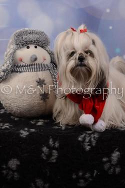 M&N Photography -DSC_7160