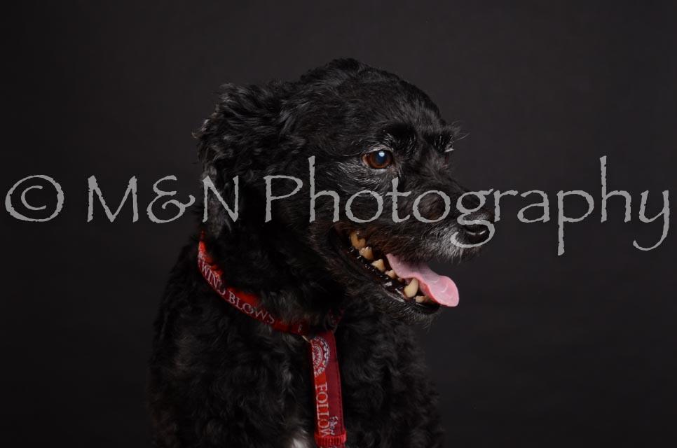 M&N Photography -DSC_5659