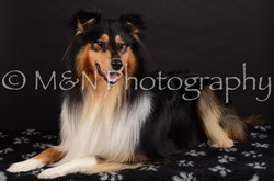 M&N Photography -DSC_5620
