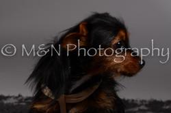M&N Photography -DSC_1498