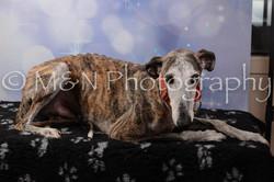 M&N Photography -DSC_7064