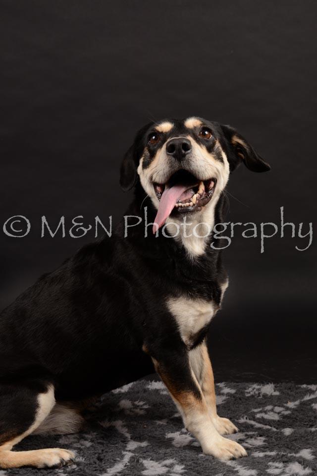 M&N Photography -DSC_9869