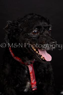 M&N Photography -DSC_5656
