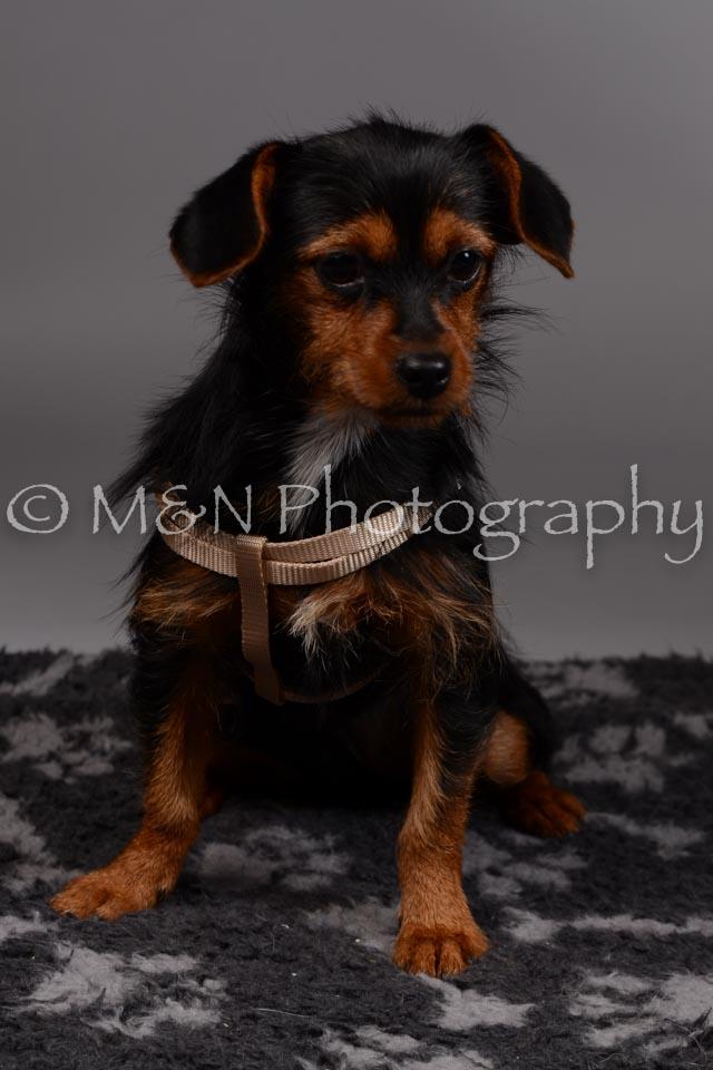 M&N Photography -DSC_1502
