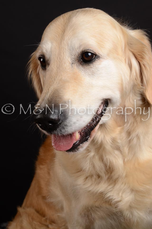 M&N Photography -DSC_5902