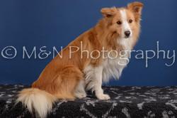 M&N Photography -DSC_4878-2