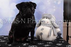 M&N Photography -DSC_6605
