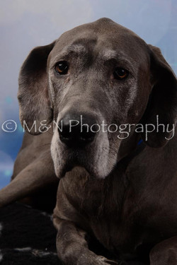 M&N Photography -DSC_6759