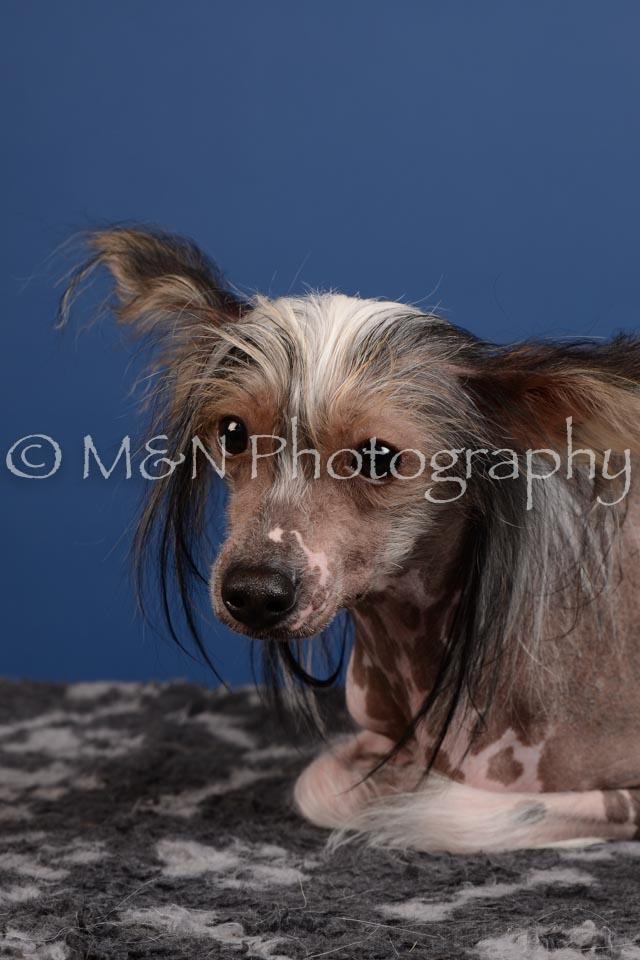 M&N Photography -DSC_5190