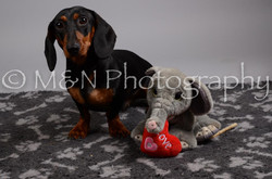 M&N Photography -DSC_2871