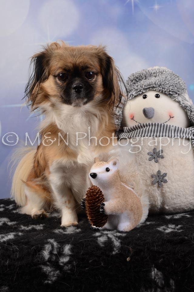 M&N Photography -DSC_6692