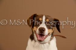 M&N Photography -_SNB0842