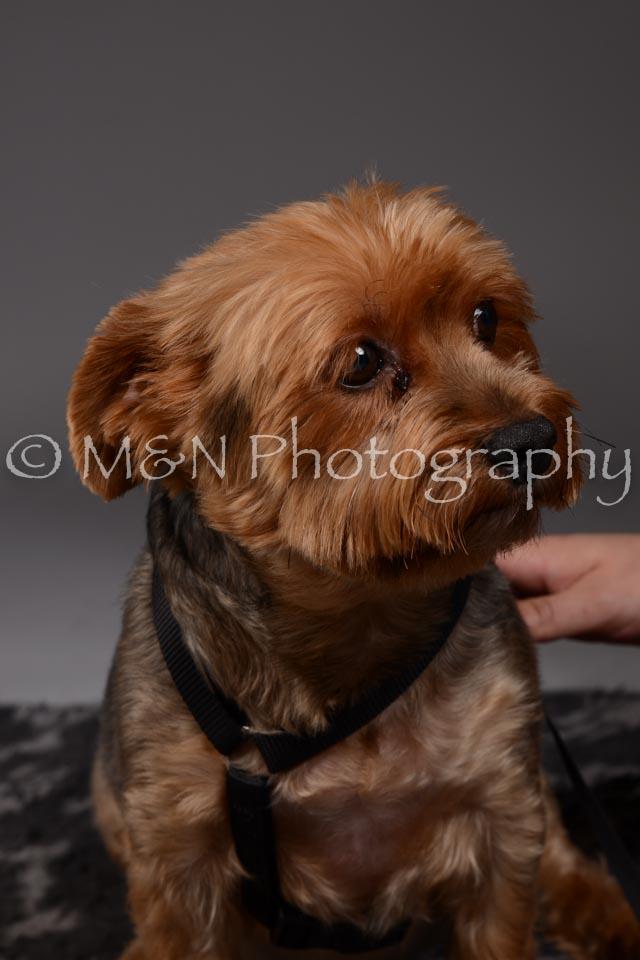M&N Photography -DSC_2141