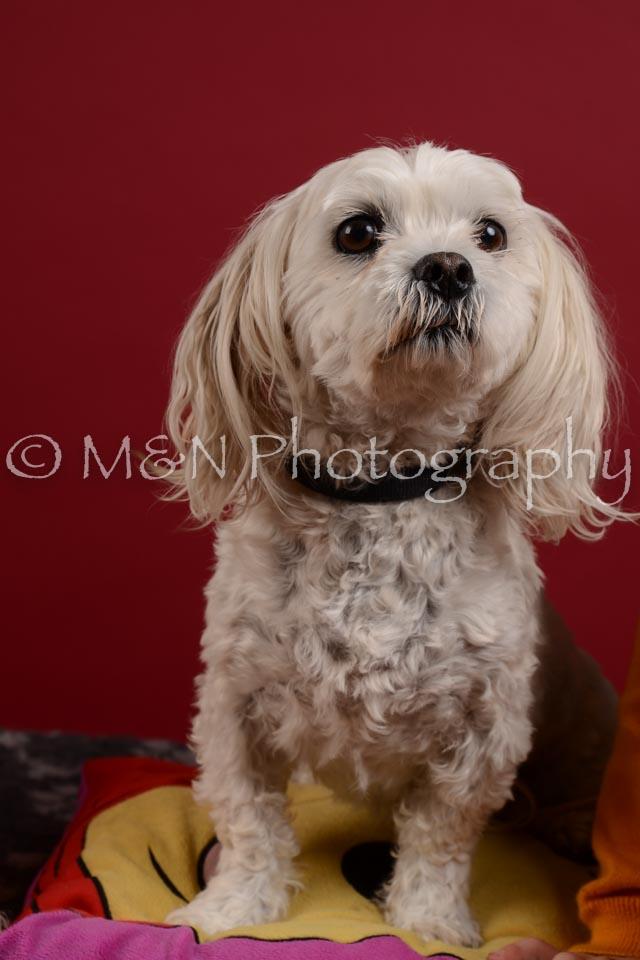 M&N Photography -DSC_3583