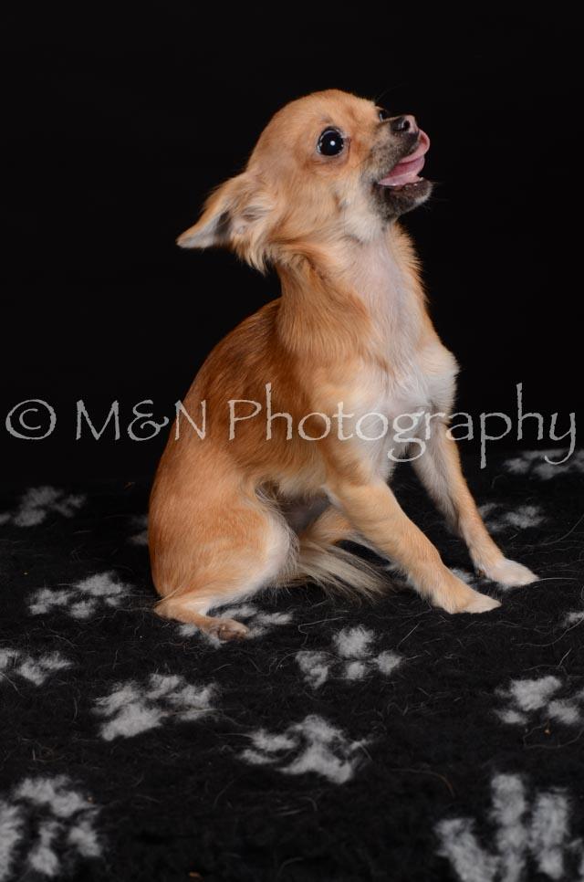 M&N Photography -DSC_5759