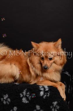 M&N Photography -DSC_5935