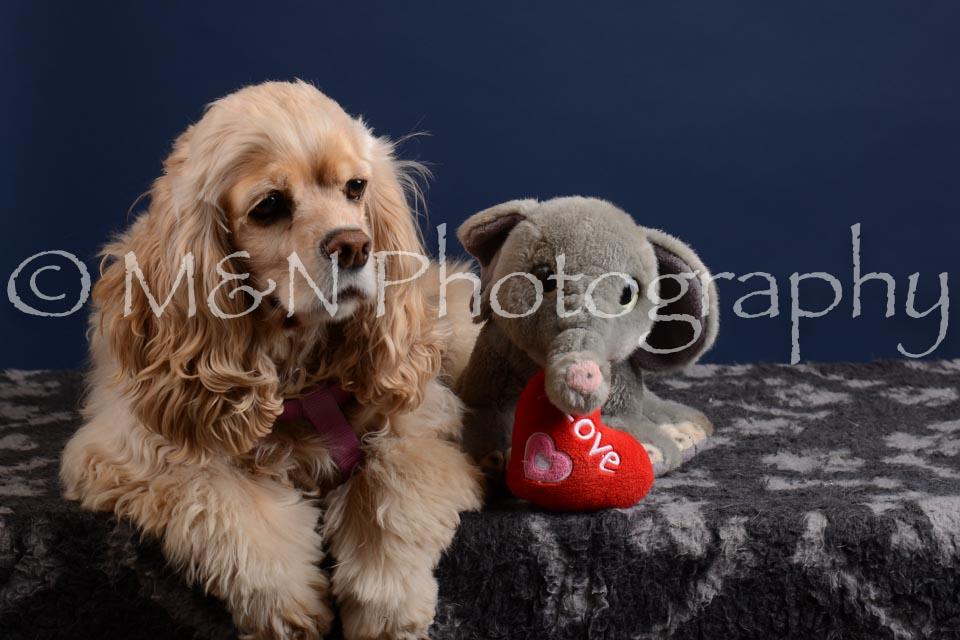 M&N Photography -DSC_4024