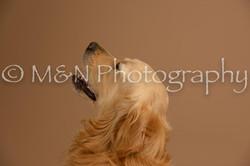 M&N Photography -_SNB0638