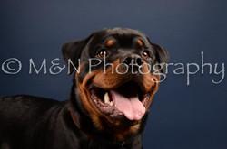 M&N Photography -DSC_3756