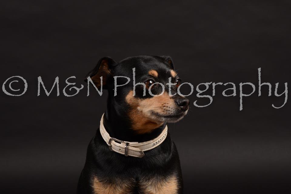 M&N Photography -DSC_9648