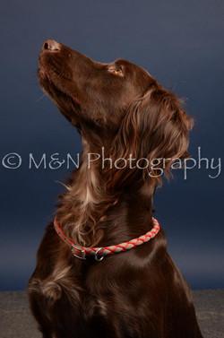 M&N Photography -DSC_4516