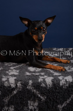 M&N Photography -DSC_3867