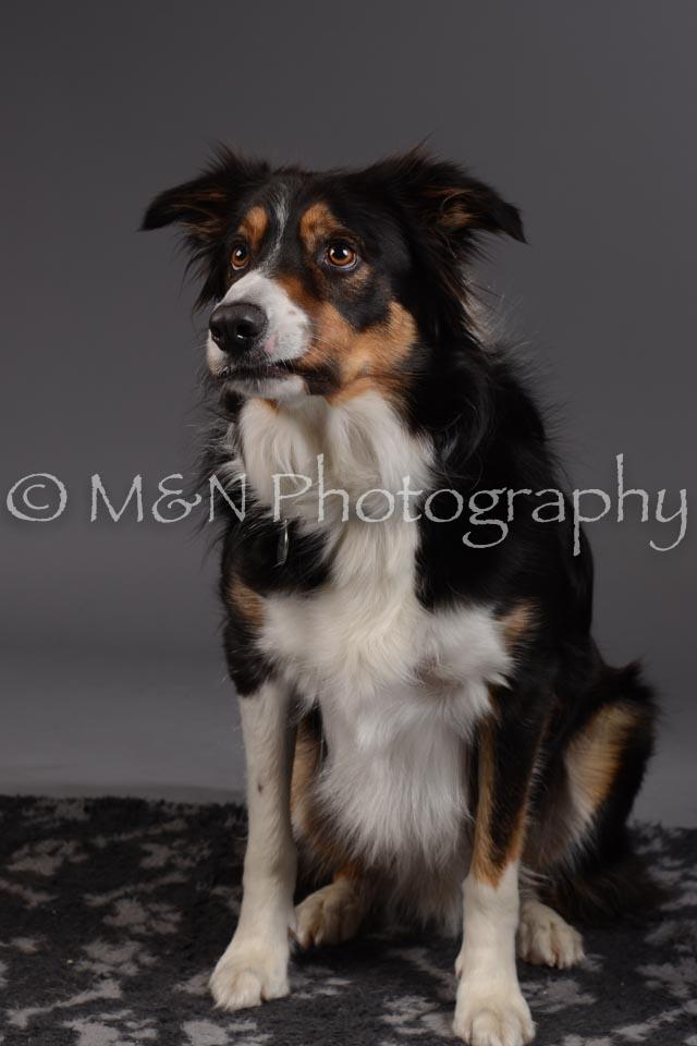 M&N Photography -DSC_2051