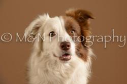M&N Photography -_SNB0628