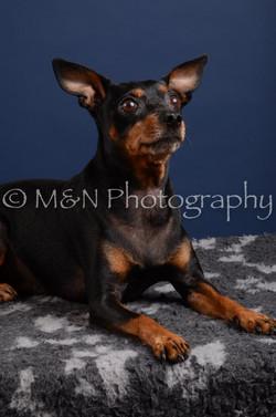 M&N Photography -DSC_3869