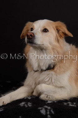 M&N Photography -DSC_5696