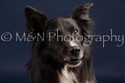 M&N Photography -DSC_0687