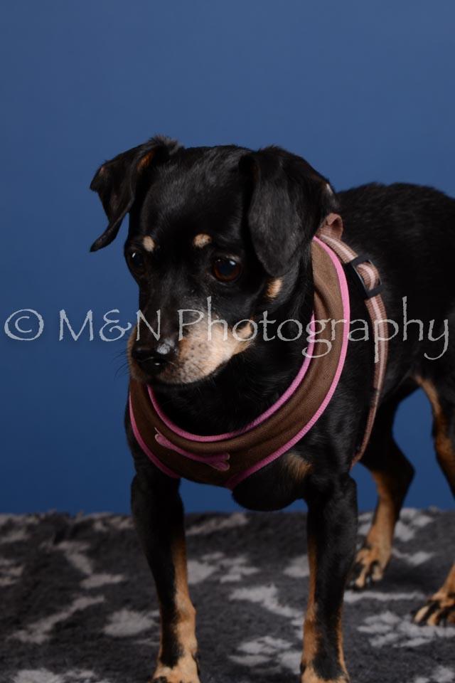 M&N Photography -DSC_5234