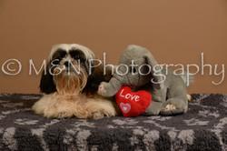 M&N Photography -_SNB0495