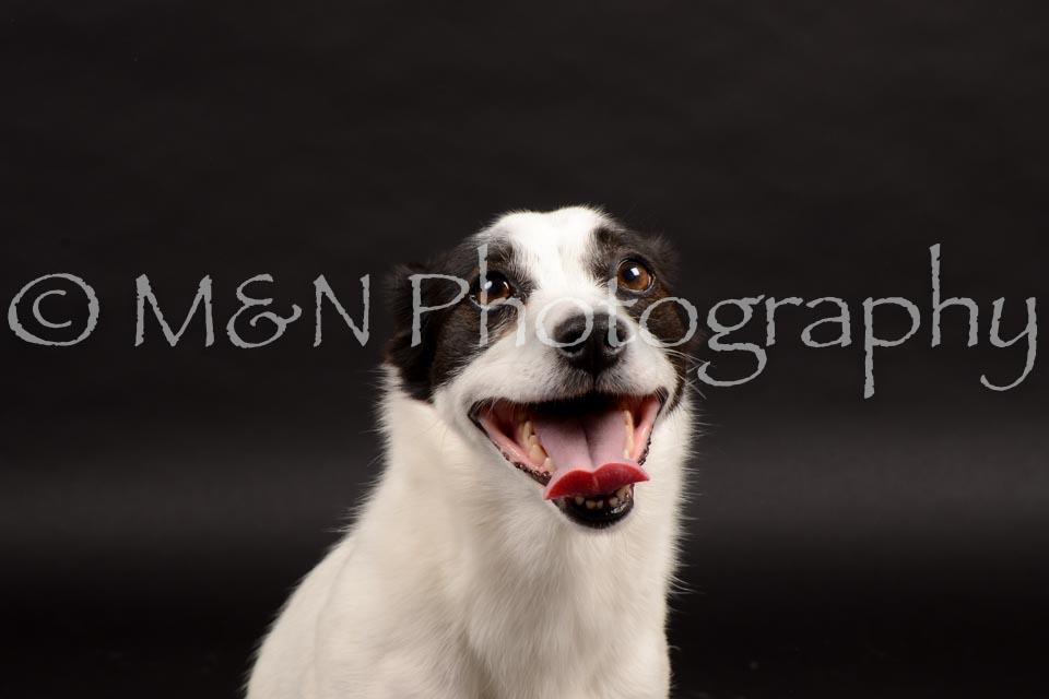 M&N Photography -DSC_9861