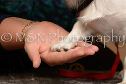 M&N Photography -_SNB0745