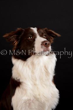 M&N Photography -DSC_5883