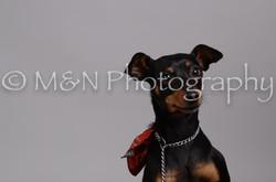 M&N Photography -DSC_2805