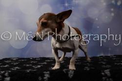 M&N Photography -DSC_7112