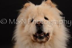 M&N Photography -DSC_9690