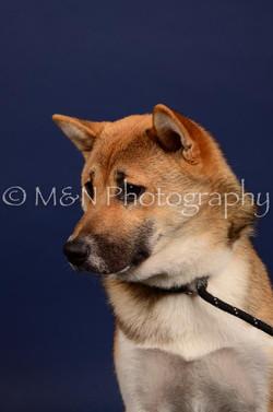 M&N Photography -IMG_4755
