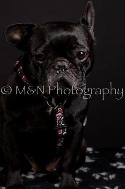 M&N Photography -DSC_5666