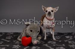 M&N Photography -DSC_2194