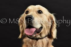 M&N Photography -DSC_2616