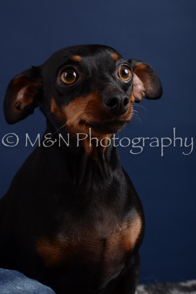 M&N Photography -DSC_3816