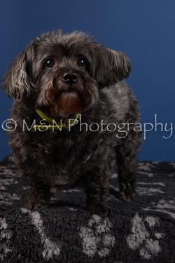 M&N Photography -DSC_5037