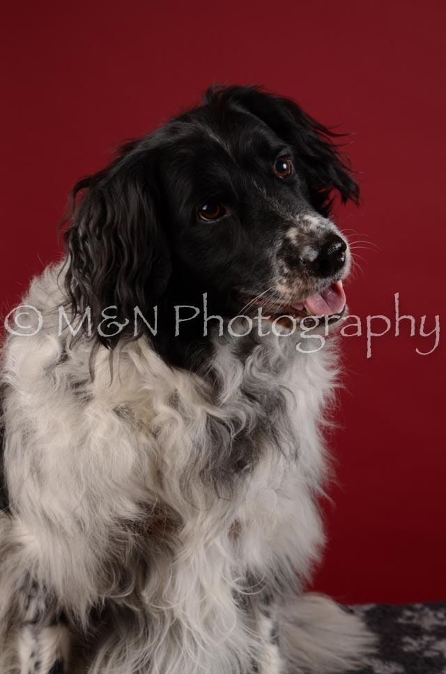 M&N Photography -DSC_3315