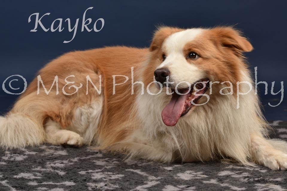049 - Kayko -DSC_2167